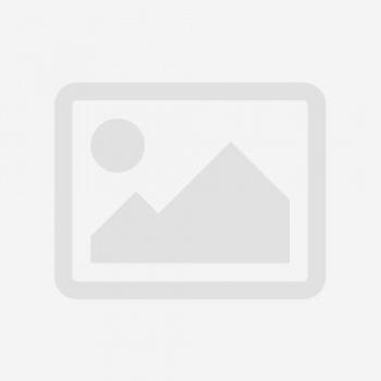 «ՔԱՂԱՔԱՑԻԱԿԱՆ ԻՐԱՒՈՒՆՔԻ ՀՌՉԱԿԱԳԻՐ»-Ի ՆԱԽՆԱԿԱՆ ՏԱՐԲԵՐԱԿԸ